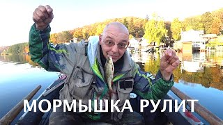 ЗИМНЯЯ РЫБАЛКА ЛЕТОМ Ловим на мормышку белую рыбу