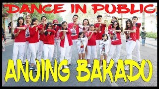 Download GOYANG ANJING BAKADO - BALASAN ANJING KACILI TETEW - DANCE IN PUBLIC - Choreography by Diego Takupaz Mp3