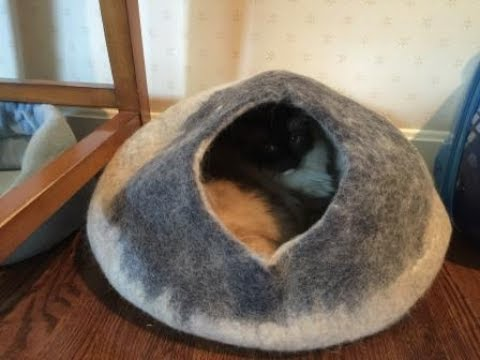 wool-cat-cave:-kittycentric-cozy-cat-cave-bed-product-review-video---floppycats