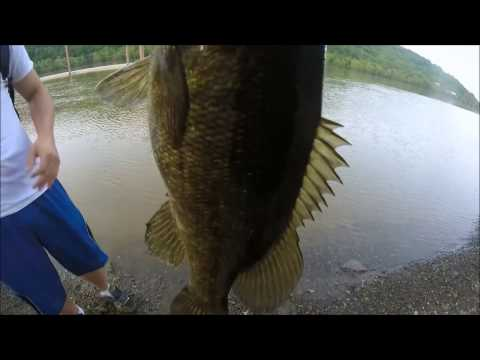 A Giant PA Smallmouth Bass Caught on a KVD 1.5 (Monongahela River)