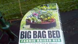 My Favorite Vegetable Growing Containers - Smart Pot Big Bag Bed Raised Bed Setup