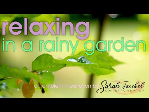 relaxing in a rainy garden - an ambient meditation