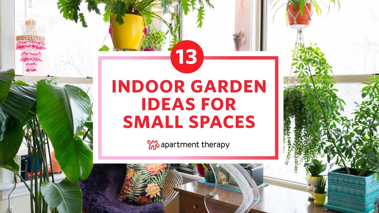 13 Indoor Garden Ideas For Small Spaces | Apartment Therapy