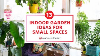 Twin Platform Bed Ikea, 13 Indoor Garden Ideas For Small Spaces Apartment Therapy Youtube