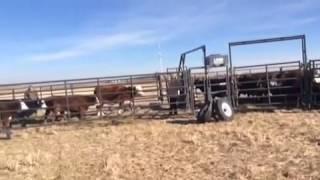 Wrangler Sliding Corral System