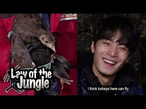 Nuest W JR so Happy for successful hunt [Law of the Jungle Ep 304]