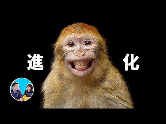 【震撼】進化,從1859到2020 | 老高與小茉 Mr & Mrs Gao