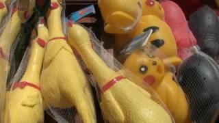орущие курицы и свинки - игрушки - приколы.