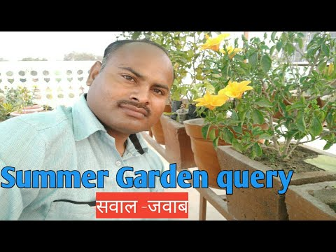 Summer Gardening Tips With Home Garden