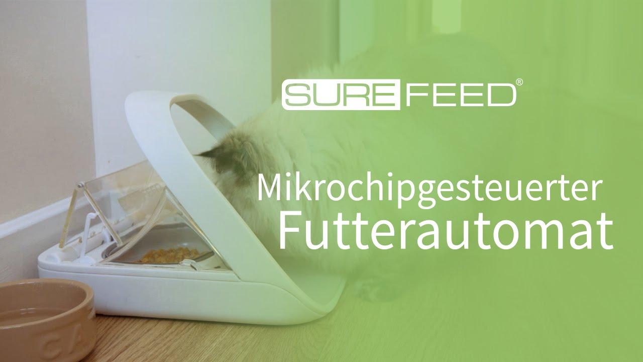 der surefeed mikrochip futterautomat f r mehrtierhaushalte youtube. Black Bedroom Furniture Sets. Home Design Ideas