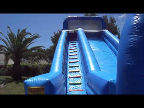 Dogs on a Jumbo Water Slide