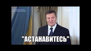 Янукович и Яйцо (клип)