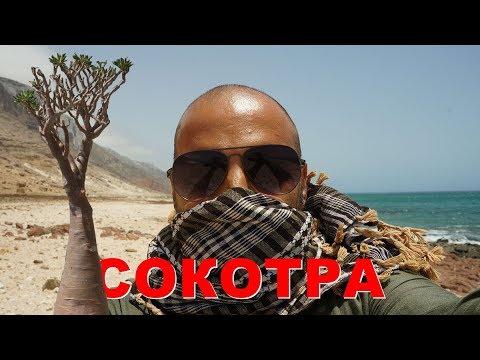 Остров Сокотра, закрытая для туризма территория. Остров Сокотра после урагана. Кругосветка на яхте.