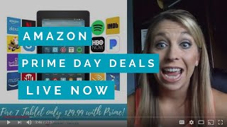 Amazon Prime Day Deals for 2018! My Top 10 Deals You Can Get Now!