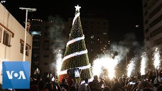 Gaza Lights Up Its Christmas Tree