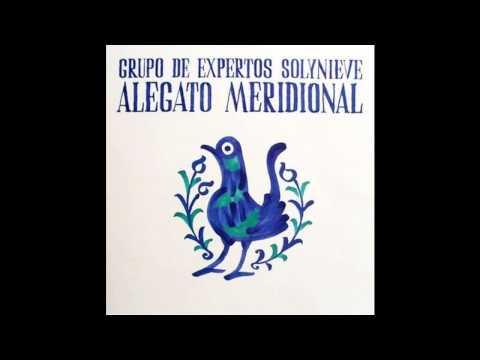 Alegato Meridional - Grupo De Expertos Solynieve