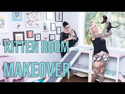 My Kitten Room Gets a MAKEOVER!