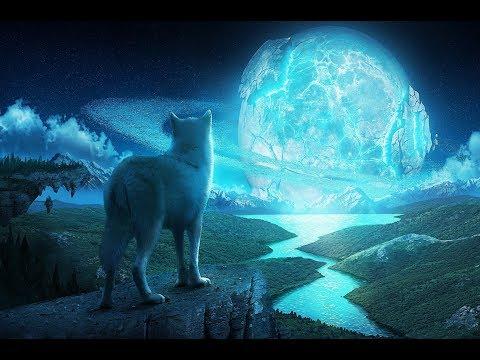 Amon Amarth - Shape Shifter | Lyrics