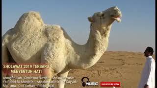 [12.58 MB] SHOLAWAT TAUBAT 2019 | SHOLAWAT NABI MENYENTUH HATI |