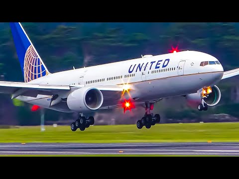 STUNNING Morning Flights | A330 A380 B777 B787 | Auckland Airport Plane Spotting