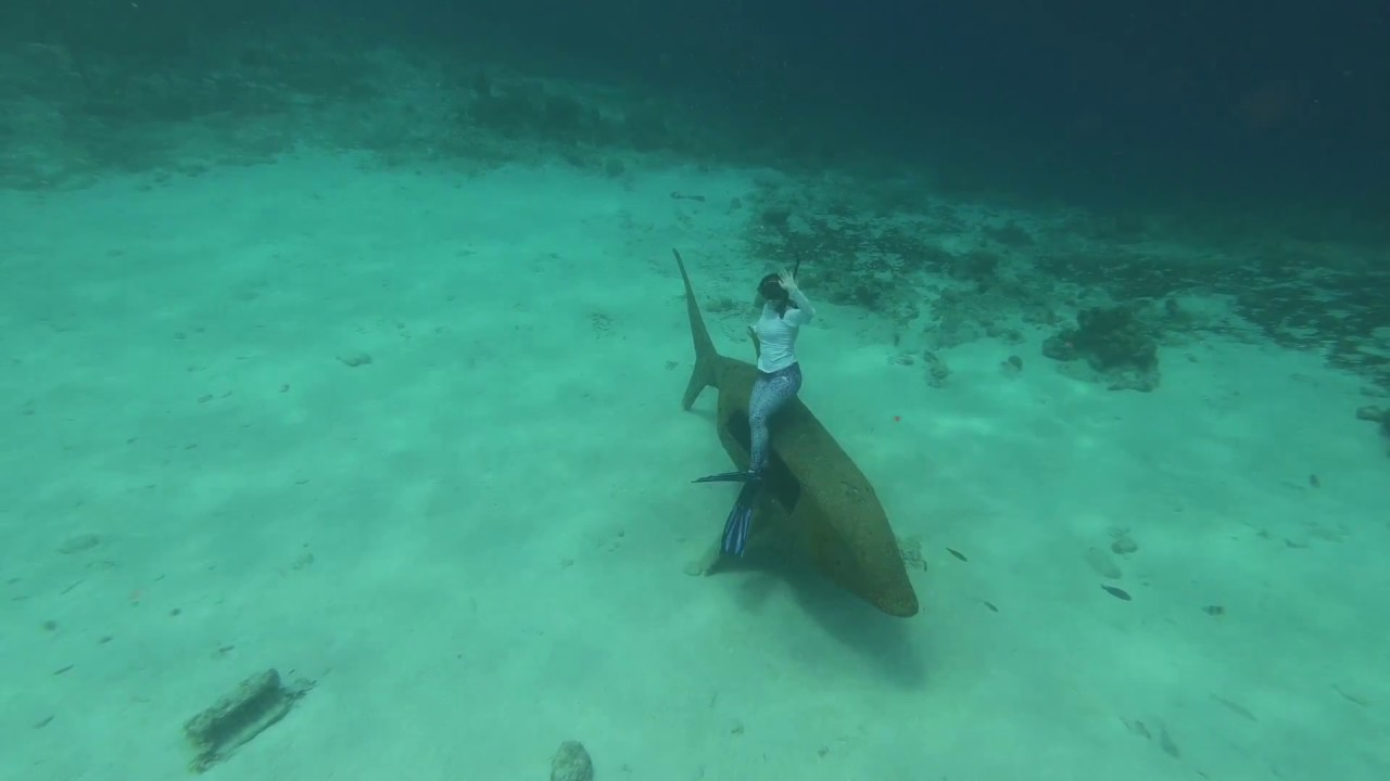 Snorkeling Kokomo Beach Curacao 5 18