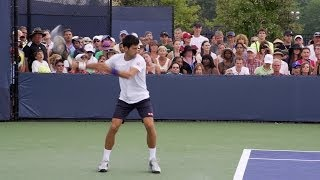 Novak Djokovic Ultimate Compilation - Forehand - Backhand - Overhead - Volley - Serve - 2013 Cincinn