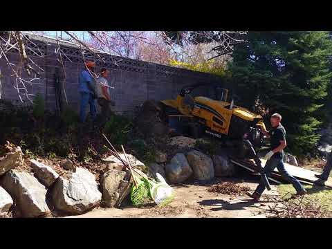 Tough Stump Grinding Job 2