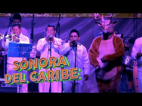 Sonora Del Caribe - Concierto Pura Feria
