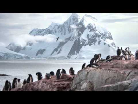 Expedition to Antarctica: A Holiday Greeting
