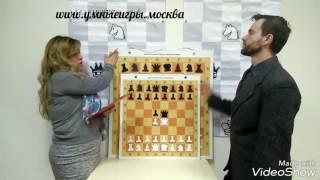 Обзор № 5. Демонстрационная шахматная доска 60х60. 3 в 1. УмныеИгры.Москва