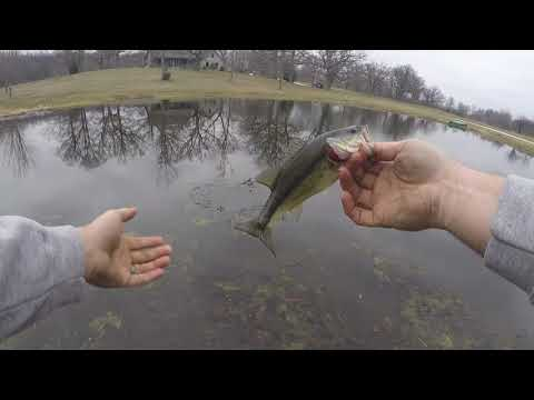 Early Spring Bass Fishing- Small Pond