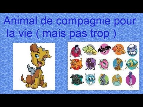 Monster high animal de compagnie pour la vie mais pas trop par monsterhighconseilet youtube - Animal de compagnie appartement ...