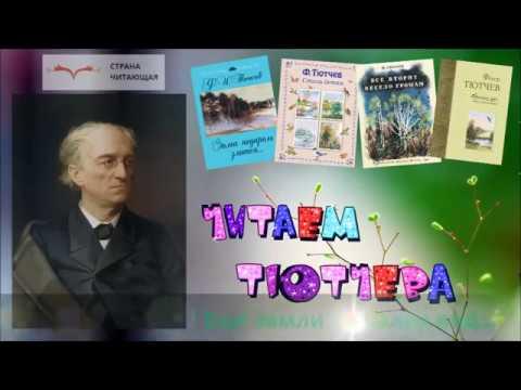 Изображение предпросмотра прочтения – КсенияЧегвинцова читает произведение «Ещё земли печален вид…» Ф.И.Тютчева