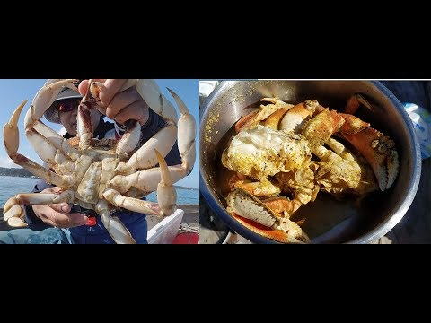 Catch and cook dungeness crab - how to catch crabs on Oregon coast