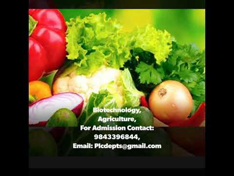Best top ten  Biotechnology in Agriculture  | Colleges  |  Andhara Pradesh |  Tamilnadu  | India