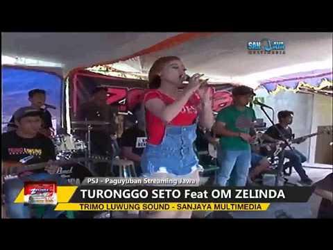 Bojo Galak dan Goyang Walang kekek NEWS!!! GRESS DAN JOS ZELINDA  TERBARU 2017