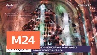Смотреть видео На парковке одного из торговых центров Москвы собрали елку из машин - Москва 24 онлайн