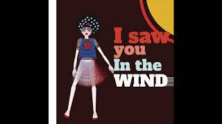 I saw You in the wind - Arema Arega (lyrics on Caption) #LatinSoul #Lounge