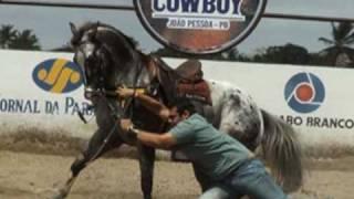 video de abertura - oração do cavalo.mpg