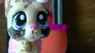 LPS: Insanity (Episode 2: Is It Love?)