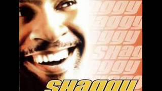 SHAGGY _ Hey Sexy Lady (HQ widestereo).wmv