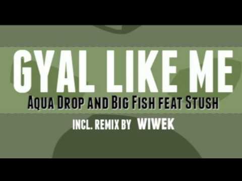 Aquadrop and Big Fish - Gyal Like Me Feat....