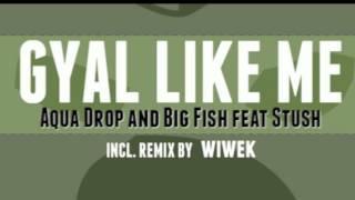 Aquadrop and Big Fish - Gyal Like Me Feat. Stush (Wiwek Remix)