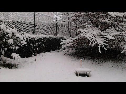 Nevicata Niardo 27/12/2014 - Timelapse 720p