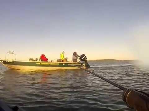Dreaming of Tillamook Bay Fall Chinook
