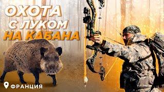 Охота с луком на кабана во Франции