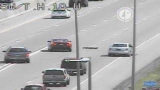 Family of ducks safely cross Minnesota freeway