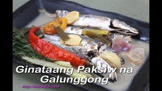 Ginataang Paksiw na Galunggong