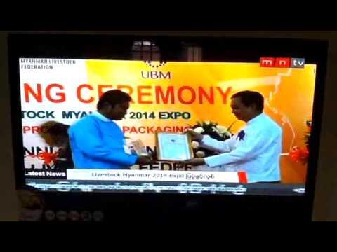LiveStock Myanmar 2014 - MNTV News
