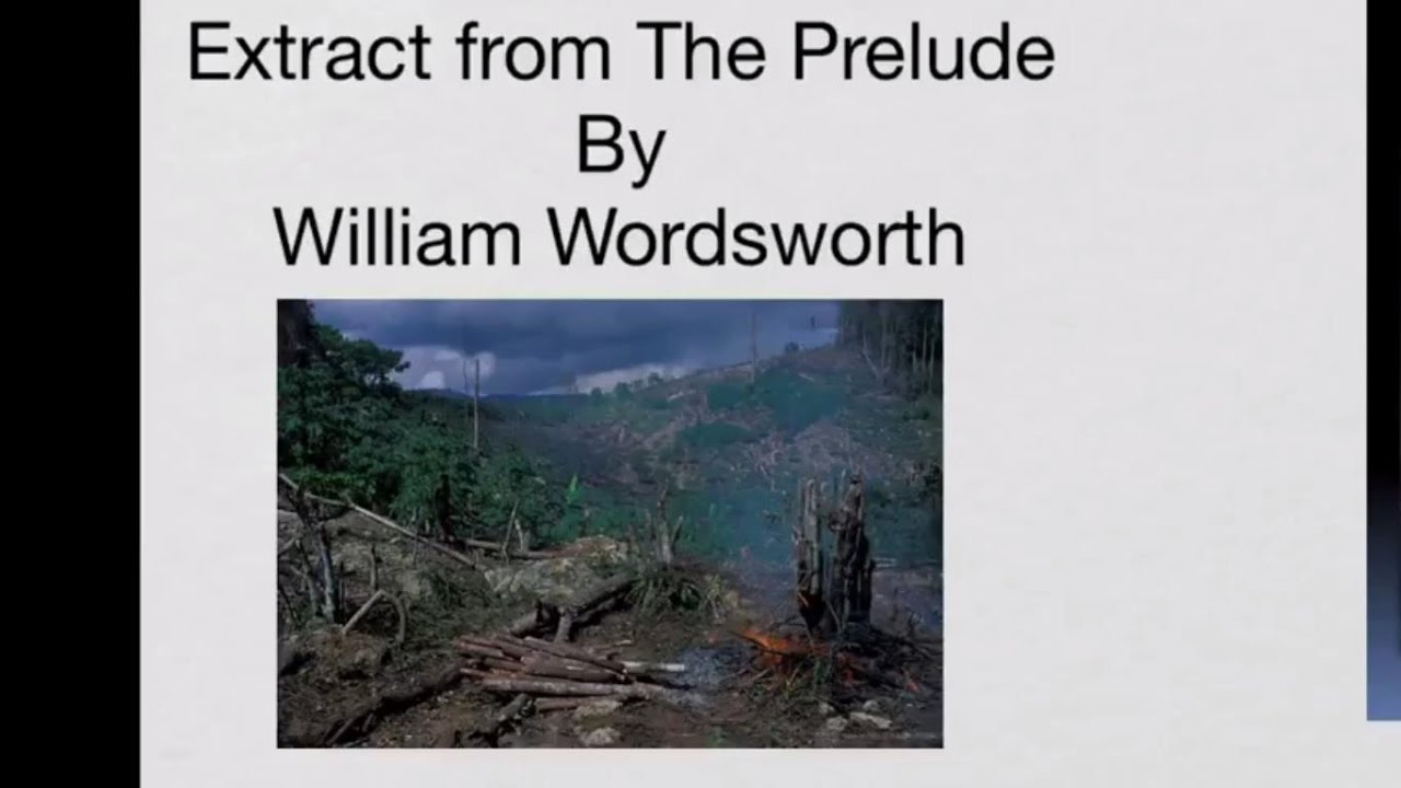 essays on the prelude by william wordsworth Wordsworth has been considered to be one of the most significant romantic writers in history the romantic period was one of the most influential time.